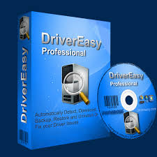 DriverEasy Professional 5.6.15.34863 Crack